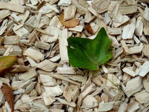Przydatne rozdrabniacze do drewna