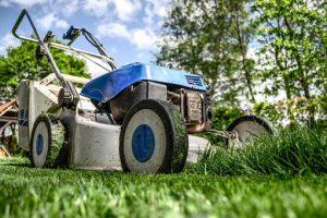 Nawożenie trawników wapnem